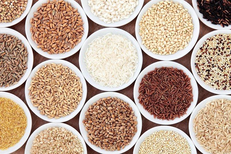Proteínas vegetais, proteína de arroz, proteína de ervilha - go vegan